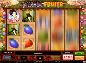 Ninja Fruits slotmaskinen SS-01