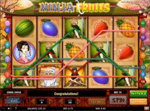 Ninja Fruits slotmaskinen SS-06