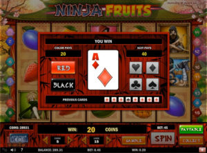 Ninja Fruits slotmaskinen SS-10