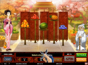 Ninja Fruits slotmaskinen SS-12