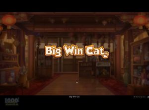 Big-Win-Cat_slotmaskinen-02