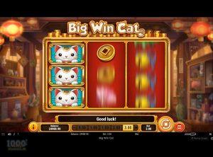 Big-Win-Cat_slotmaskinen-07