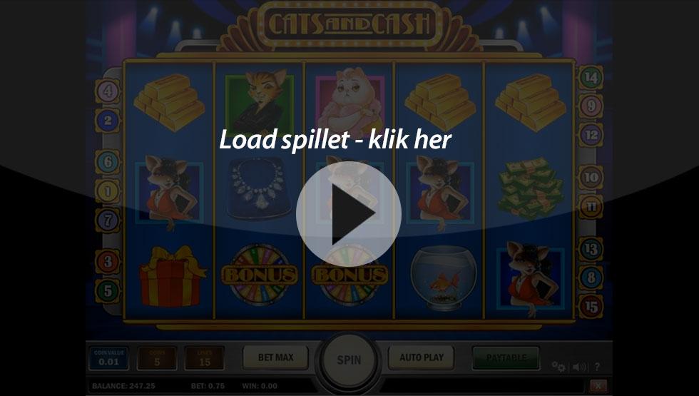Cats-and-Cash_Box-game-bingobonussen.dk